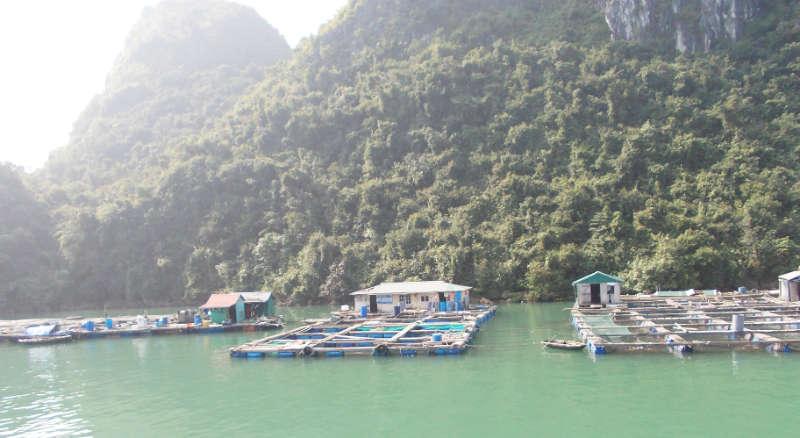 Ein Dorf auf dem Wasser